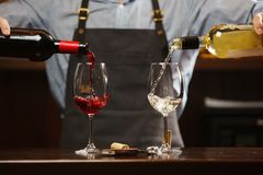 Male sommelier pouring red and white wine into long-stemmed wineglasses. Waiter with two bottles of alcohol beverage. Bartender at bar counter Royalty Free Stock Photo