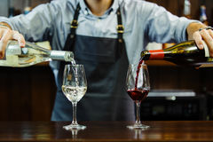 Male sommelier pouring red and white wine into long-stemmed wineglasses. Waiter with two bottles of alcohol beverage. Bartender at bar counter Royalty Free Stock Photography