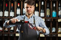 Male sommelier pouring red wine into long-stemmed wineglasses. Royalty Free Stock Photos