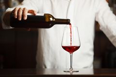 Male sommelier pouring red wine into long-stemmed wineglasses. royalty free stock photography