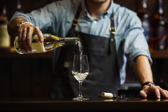 Male sommelier pouring white wine into long-stemmed wineglasses. Royalty Free Stock Image