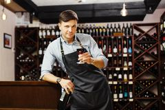 Male sommelier tasting red wine in cellar. Professional degustation expert. Appreciate quality of wine. Winemaker with bocal of alcohol drink and bottle in stock photography