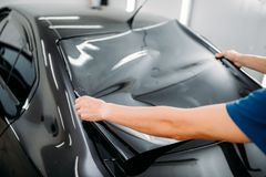 Male specialist with car tinting film in hands. Installation process, tinted auto glass installing procedure Royalty Free Stock Image
