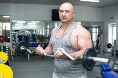 Male sports bodybuilding. Adult brutal man is engaged in sports bodybuilding Royalty Free Stock Images