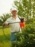Male spraying tree branches Stock Photo