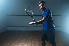 Male squash player training on indoor court. Male squash player with racket training on indoor court. Active sport with racquet and ball Royalty Free Stock Image