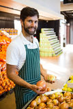 Male staff arranging fruits in organic section of supermarket. Portrait of male staff arranging fruits in organic section of supermarket Royalty Free Stock Image
