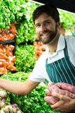 Male staff arranging vegetables in organic section Stock Photos