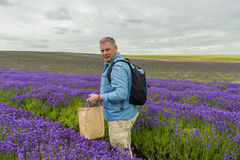 A male standing in lavender field Stock Photography