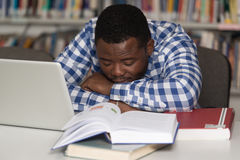 Male Student Sleeping In Library. Sleeping African Student Sitting And Leaning On Pile Of Books In College - Shallow Depth Of Field Stock Photos