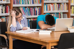 Male Student Sleeping In Library. Stressed Students In High School Sitting At The Library Desk - Shallow Depth Of Field Stock Photography