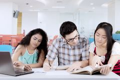 Male student studying with his friends. Portrait of a male college student studying with his friends in the library Stock Photos