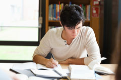 Male student working on an essay. In a library Royalty Free Stock Photography