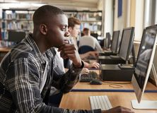 Free Male Student Working On Computer In College Library Royalty Free Stock Photo - 104866655