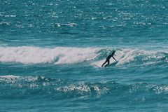 Male surfer in the ocean,summer background concept royalty free stock images