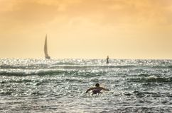 Male surfer paddling out at sunset in Hawaii with sailboats in background royalty free stock images