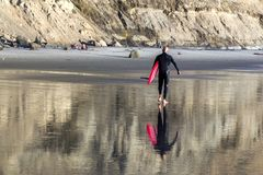 Male Surfer with Red Surf Board on Torrey Pines Beach in San Diego California. Male Surfer in Wet Suit carrying red surfboard during low tide on Torrey Pines Stock Images