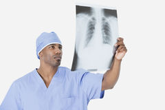 Male surgeon analyzing x-ray report over gray background Stock Photography