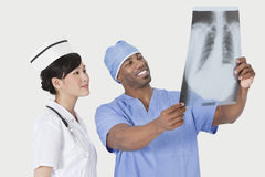 Male surgeon with nurse examining X-ray report over gray background Stock Images