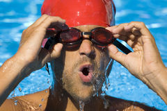 Male Swimmer. In the water at the end of a race Royalty Free Stock Images