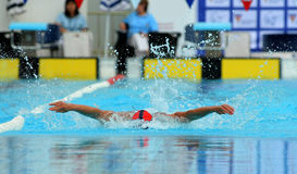 Male swimmer. Powerful male swimmer swimming butterfly stroke Stock Images