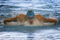 Male swimmer in butterflay race during 7th Trofeo citta di Milano swimming competition. MILAN, ITALY - March 10, 2017: Male swimmer in butterflay race during Royalty Free Stock Photos