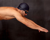 Male swimmer diving Stock Image
