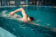 Male swimmer swims on workout in swimming pool. Male swimmer in goggles swims on workout in swimming pool. Aqua sport training, healthy lifestyle Stock Photos