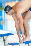 Male swimmer jumping in the pool. Training and strenght concept Stock Photography