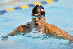 Male Swimmer In Pool Competition Stock Photography