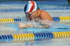 Male Swimmer Swimming Stock Photos