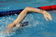 Male swimmer. Swimming crawl in a competition swim pool Royalty Free Stock Images