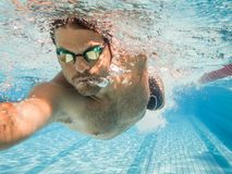 Pro male swimmer in the swimming lane. Male swimmer in the swimming pool.Underwater photo with copy space Stock Images