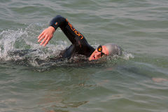 Male Swimmer Swims Freestyle In Lake Michigan Royalty Free Stock Photo