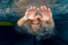 Male swimmer. Young male swimmer swimming in a pool underwater Royalty Free Stock Photography
