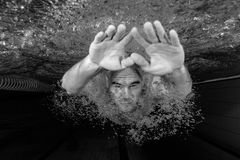Male swimmer. Young male swimmer swimming in a pool underwater Stock Image