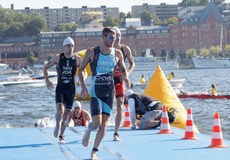 Male swimmers climbing up from the water. STOCKHOLM - AUG 22, 2015: Group of male swimmers climbing up from the water in the Men's ITU World Triathlon series Royalty Free Stock Photos