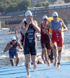 Male swimmers climbing up from the water. STOCKHOLM - AUG 22, 2015: Mario Mola, Eric Lagerstrom and other male swimmers climbing up from the water in the Men's Royalty Free Stock Photos