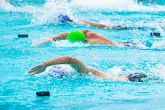 Male swimmers competing in freestyle stroke at a local swimming. Pool, good for sport, competition, or not giving up concept Royalty Free Stock Photo