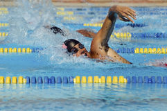 Male Swimmers In Pool. Side view of a young male swimmers in pool Stock Image