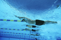 Male Swimmers Racing In Pool. Underwater view of male swimmers racing in pool Royalty Free Stock Images