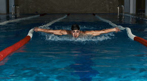 Male swimming in the pool Royalty Free Stock Images