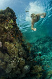 Male swimming underwater on reef. Male swimming down underwater next to coral reef Royalty Free Stock Photo