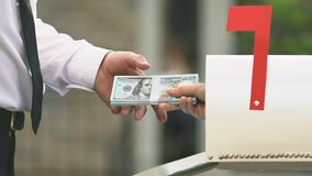 Male taking dollar banknotes from post box, money transfer, bank service payment. Stock footage stock video