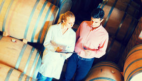Male talking with technician. Male 40s owner of winery having conversation with technician in cellar Royalty Free Stock Photo