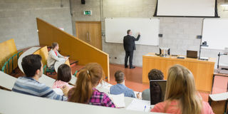 Male teacher with students at the lecture hall. Rear view of a male teacher with students at the college lecture hall Royalty Free Stock Photography