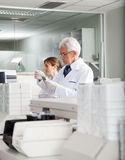 Male Technician Examining Samples. Senior male technician examining samples in laboratory Stock Photography
