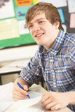 Male Teenage Student Studying Royalty Free Stock Photo