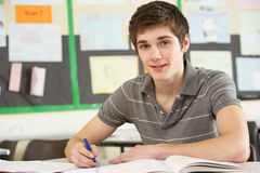 Male Teenage Student Studying