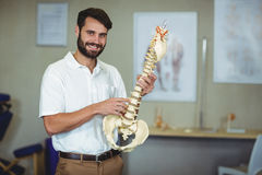 Male therapist holding spine model in clinic Stock Image